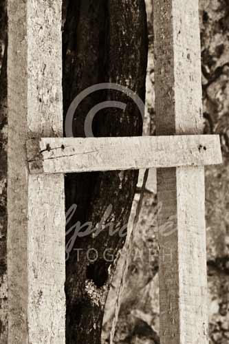 Letter H H015 Alphabet Photography