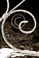 Alphabet Photography Letter E