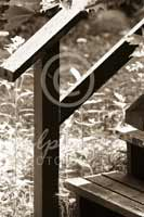 Alphabet Photography Letter F
