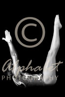 Alphabet Photography Letter U