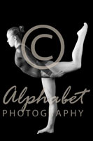 Alphabet Photography Letter Y