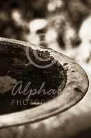 Alphabet Photography Letter D